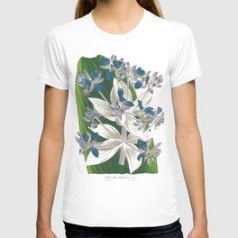 Cochliostema Jacobianum Spiderwort Blue Flower color lithograph T-shirt