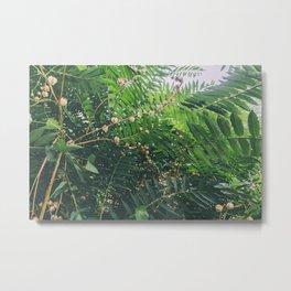 Golden Fruit Metal Print