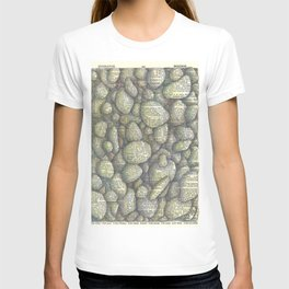 Stony River Bottom T-shirt