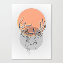 Dear Deer Canvas Print