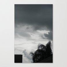 Zeus is Coming Canvas Print