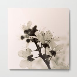 Blossoms Monochrome Metal Print