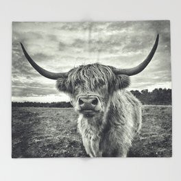 Highland Cow II Decke