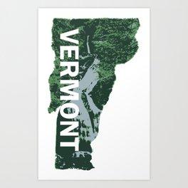 State of Vermont - Moss Glen Falls Art Print
