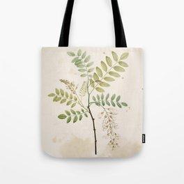 Black Locust Botanical Illustration Tote Bag