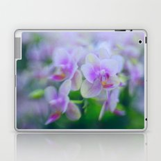 In Harmony Laptop & iPad Skin