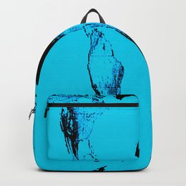 World Map : Gall Peters Blue Backpack