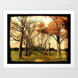 Chester County, PA: A path in the park Art Print