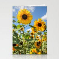 sunflowers Stationery Cards featuring Sunflowers by David Tinsley