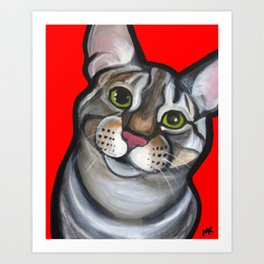 Lola the tabby Art Print