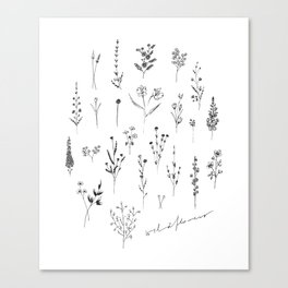 Wildflowers II Canvas Print