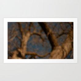 a tree Art Print