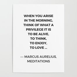 Stoic Inspiration Quotes - Marcus Aurelius Meditations - What a privilege it is to be alive Poster