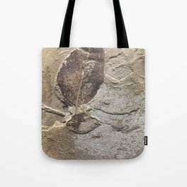 Nature - Leaf of our Past Tote Bag