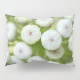Wht-flowered Milkweed Pillow Sham