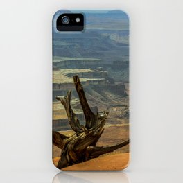 CanyonLand iPhone Case