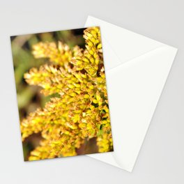 It's All Yellow Stationery Cards