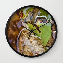 Leaves underwater Wall Clock