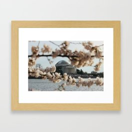 Jefferson Memorial Through the Cherry Blossoms Framed Art Print