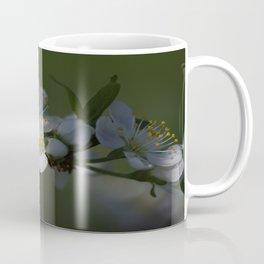 Plum tree flowers Coffee Mug