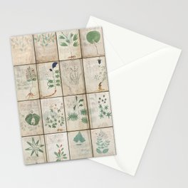 The Voynich Manuscript Quire 1 - Natural Stationery Cards