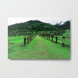 Causeway to Wat Phou  Metal Print