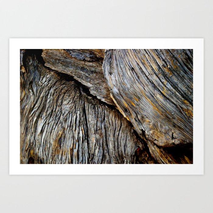 Wood Waves Art Print