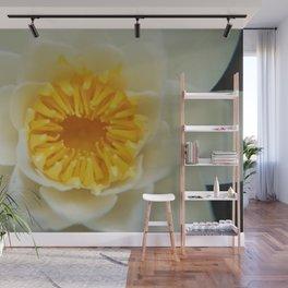 Pollen Trap - Garden Photography by Fluid Nature Wall Mural
