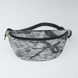 Falling into Spring bw Fanny Pack