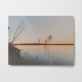 Albufer Natural Park Metal Print