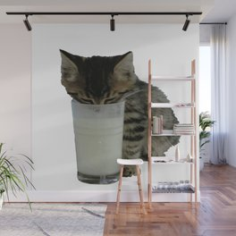 Cute Wild Kitten With A Glass Full of Optimism Wall Mural
