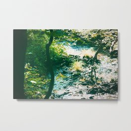 Sparkling River in the Virginian Forest Metal Print