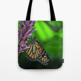Monarch Butterfly on Purple Flower Fine Art Photograph  Tote Bag