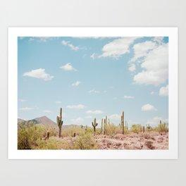 Saguaros in the Desert Art Print