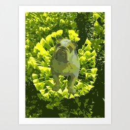 Green Pug Art Print