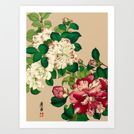 Vintage Japanese Camellias. Deep Pink on Beige Art Print