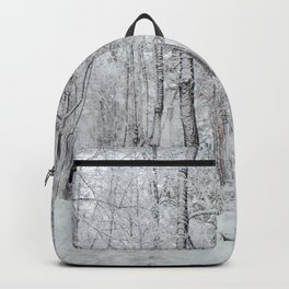 Snowfall in the park Backpack
