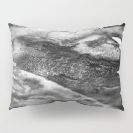 The Catherine / Charcoal + Water Pillow Sham