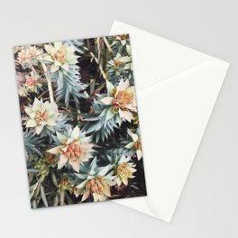 orange succulent Stationery Cards