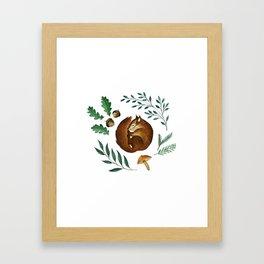 Sleepy Squirrel Framed Art Print