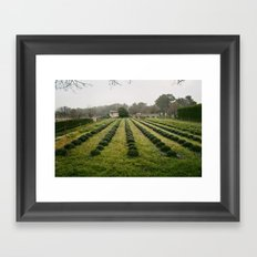 Van Gogh's View  Framed Art Print
