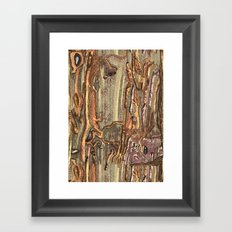 Worm Eaten Wood Framed Art Print