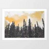 Orange Skys Above the Pines Art Print