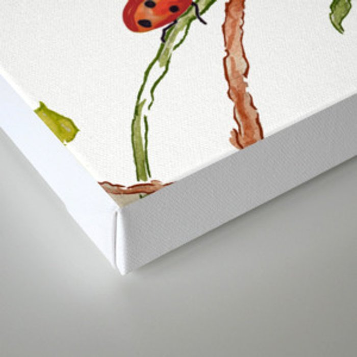 The Poppy and the Ladybug floral Canvas Print
