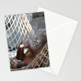 OrangUtan_2014_1202 Stationery Cards
