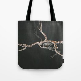 Microraptor Gui Skeletal Study (No Labels) Tote Bag