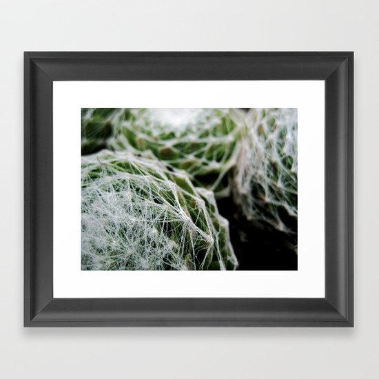 Leslie the Cactus  Framed Art Print