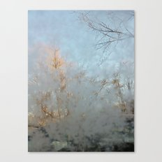 Frost Touch Canvas Print