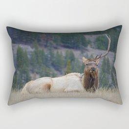 Elk with one antler in Jasper National Park | Canada Rectangular Pillow