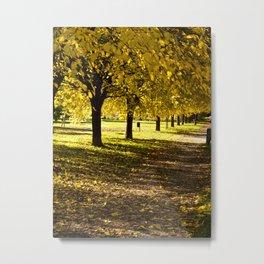 Autumn in Parco di Villa Angeletti Metal Print